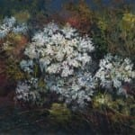 "Queen Anne's Lace - 9"" x 12"""